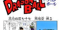 Goku Goes Back