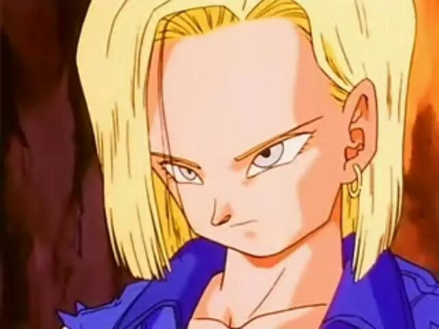 File:Android 18 436t54.JPG