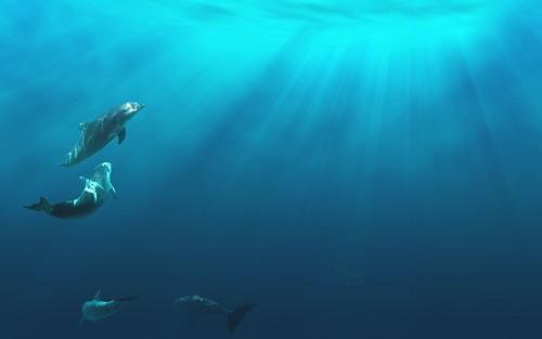 File:Animals,blue,dolphins,light,ocean,underwater-575693c2293131a85c61d85ffa436930 h.jpg