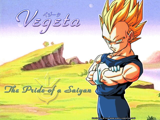 File:Vegeta s pride Wallpaper yvt2.jpg
