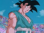 DragonballZ-Episode291 10
