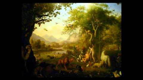 A Look At Theistic Evolution