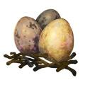 Harpy Eggs.jpg