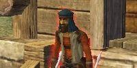 Wandering Sky Pirate Bandit