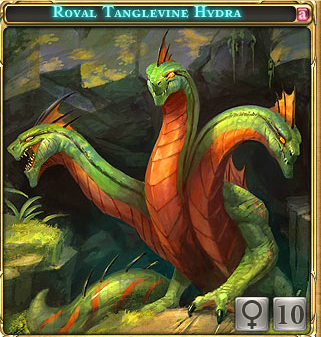 Royal Tanglevine Hydra