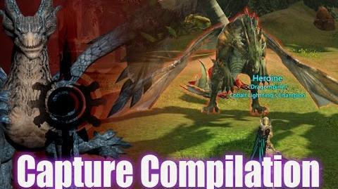 Capture Compilation - Dragon's Prophet