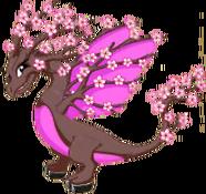 SakuraDragonAdult.png