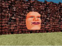 Wall Head 2