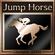 Champion Jockey Trophy 27