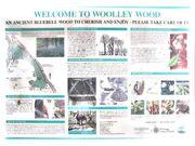 Woolley-wood