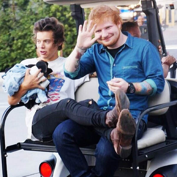 Image harry styles und ed sheeran sind gute freunde - Ed sheeran give me love live room ...