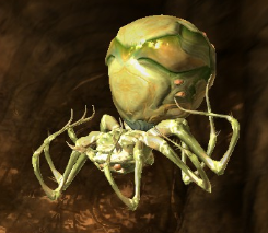 File:Scroll exploding poison spider.png