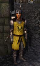 TESIV Guard Bruma 1