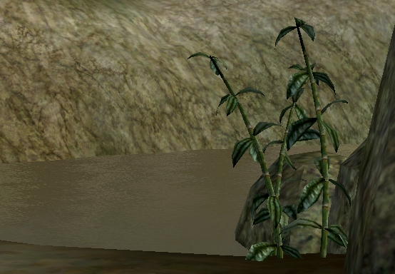 File:Gathering Marshmerrow.jpg