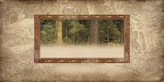 File:Load forest.png