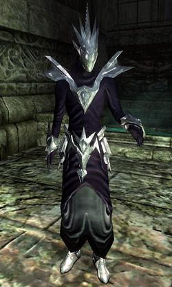 Priest of Order Ingame