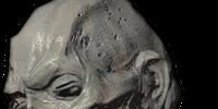 Ancient Vampire Head
