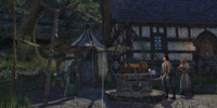 Alcaire Castle Mages Guild