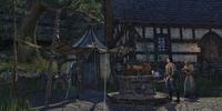 Alcaire Castle Mages Guild