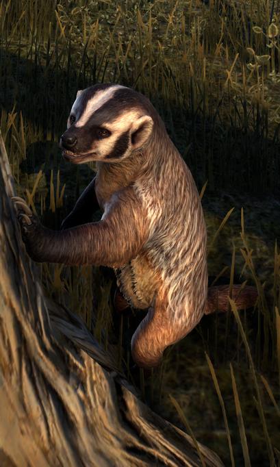 File:Badger (Online).png