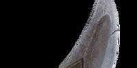 Rusted Riekling Blade