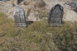 Maxivian and Neransi Faleria Graves