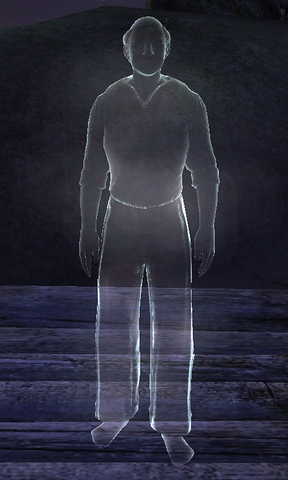File:The Forlorn Watchman (Ghost).png