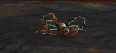 Daggerfall dead spider