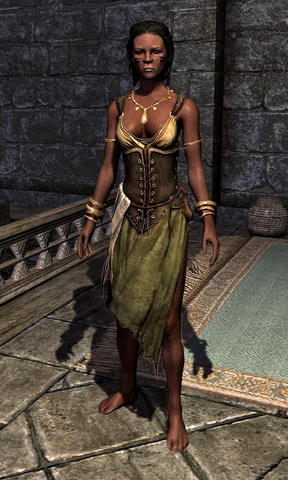 File:Tavern Clothes 000D191F.png