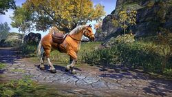Palomino Horse ESO