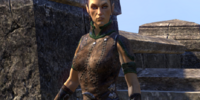 Watchwoman Cirtelcare