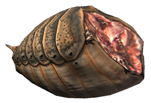 File:Ash hopper meat.png