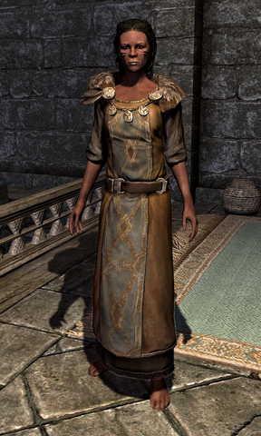 File:Refined Tunic 000E84C6.png