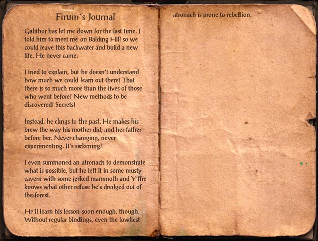 File:Firuin's Journal.png