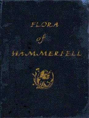 File:FloraHammerfellCover.jpg