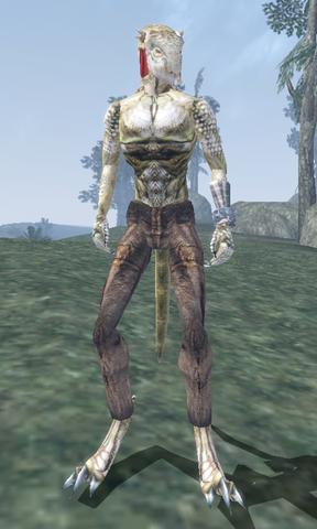 File:Muz-Ra - Morrowind.png