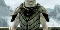 Ancient Falmer Armor
