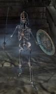 Skeleton of Alain