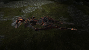 Deceased Flame Atronach