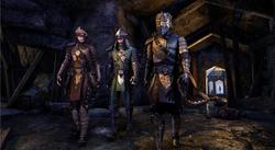Crown Motif Mercenary