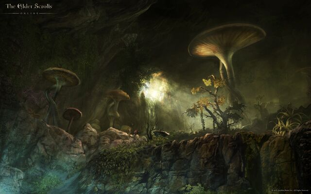 File:Fungal Grotto Concept Art.jpg