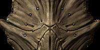 Dragonplate Shield