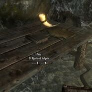 Skyrim book Of Fjori and Holgeir in situ in Ansilvund