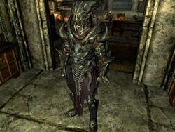 how to set carry weight in skyrim pc