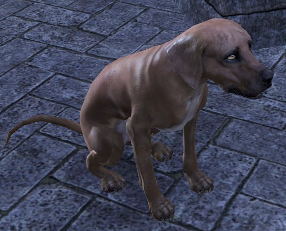 File:Lorkhan (Dog).png