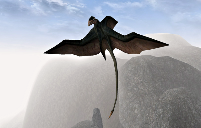 File:Cliff Racer (Morrowind).png