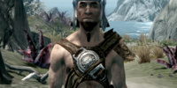 Hide Armor (Skyrim)