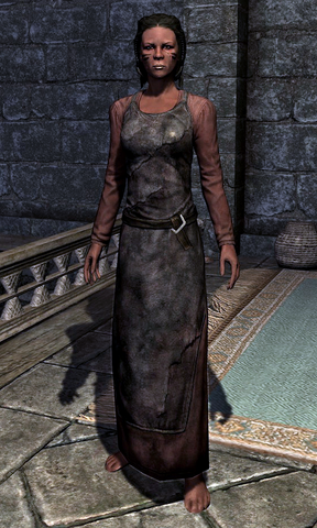 File:Blacksmith's Apron 0005B69F.png