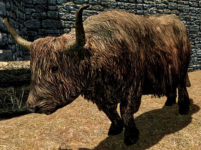 File:Cow Skyrim.png