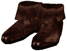 File:DoeskinShoes Ob.png